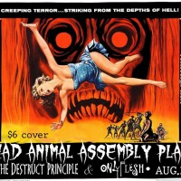 Dead Animal Assembly Plant/ The Destruct Principle/ Only Flesh