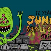 12 Years of Jungle Syndicate